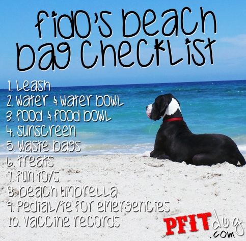 Fido's beach bag checklist